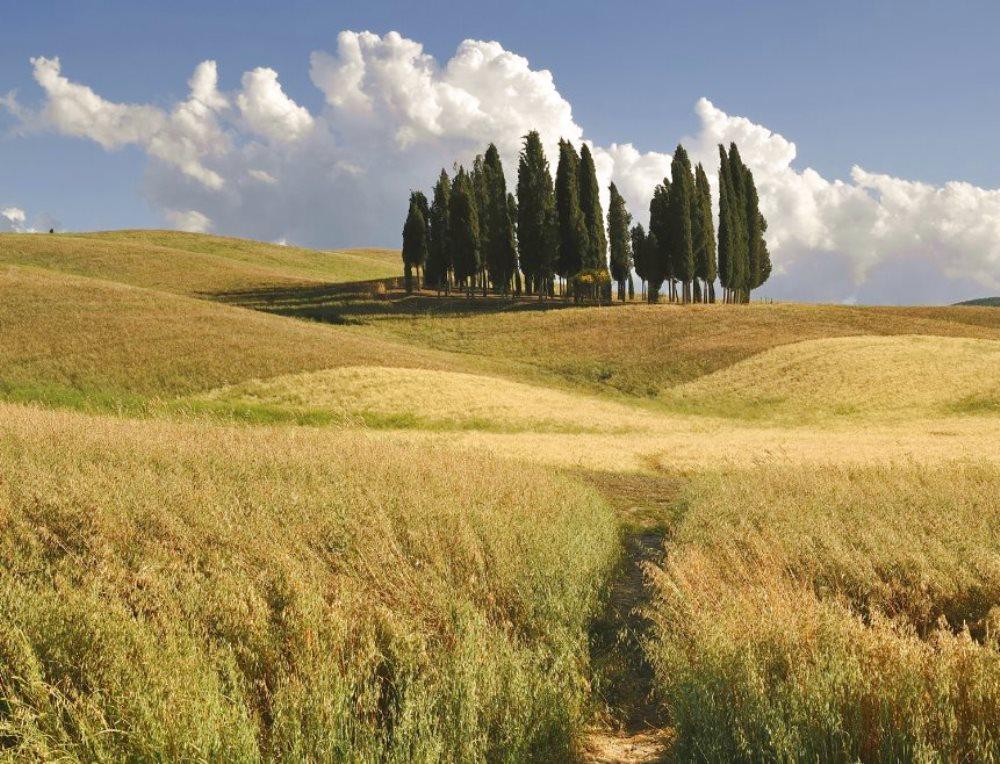 VACANZE IN TOSCANA Fra Siena e Firenze